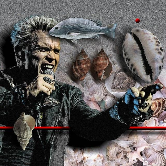 Billy Idol - slika Zorana Mujbegovica