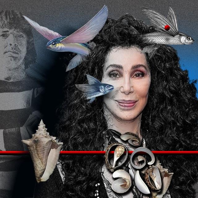 Cher - slika Zorana Mujbegovica