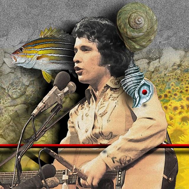 Don McLean - slika Zorana Mujbegovica