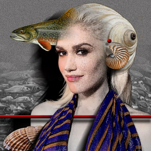 Gwen Stefani - slika Zorana Mujbegovica