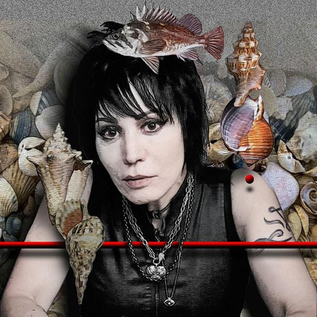 Joan Jett - slika Zorana Mujbegovica
