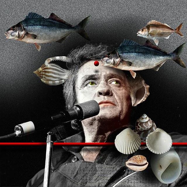 Johnny Cash - slika Zorana Mujbegovica