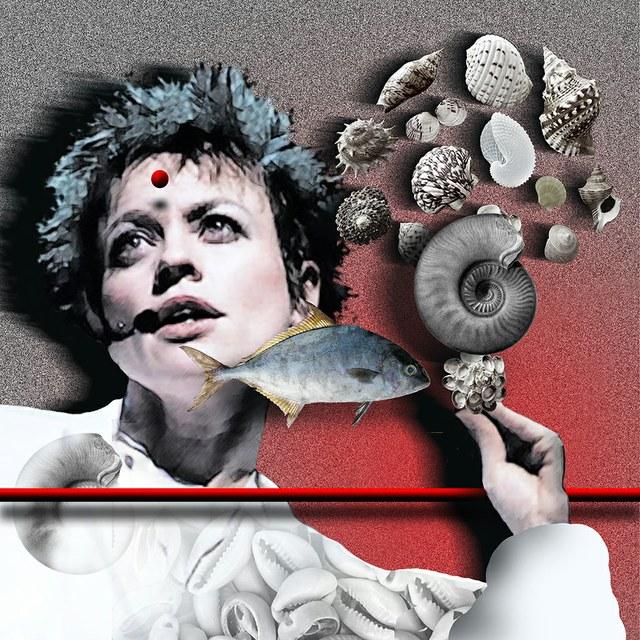 Laurie Anderson - slika Zorana Mujbegovica