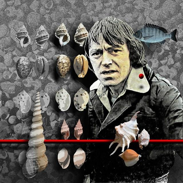 Paddy McGuigan - slika Zorana Mujbegovica
