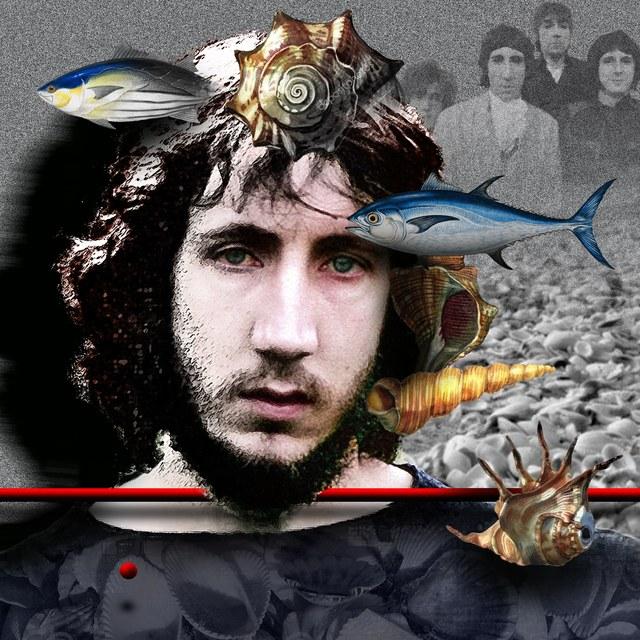 Pete Townshend - slika Zorana Mujbegovica