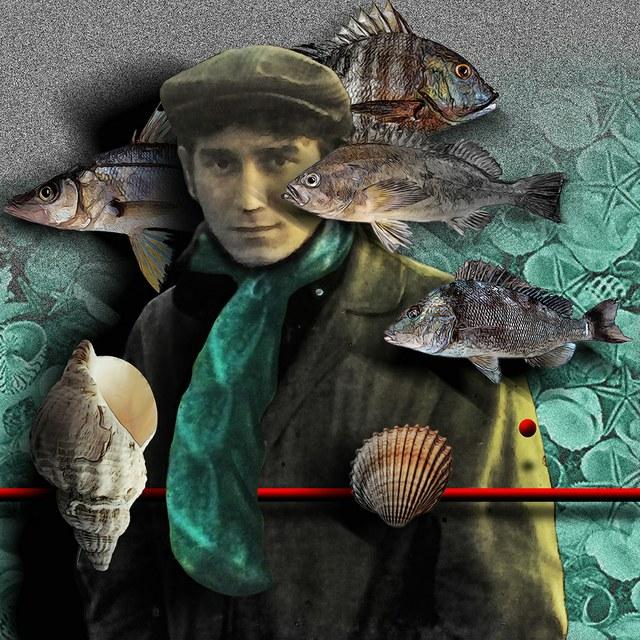 Phil Ochs - slika Zorana Mujbegovica