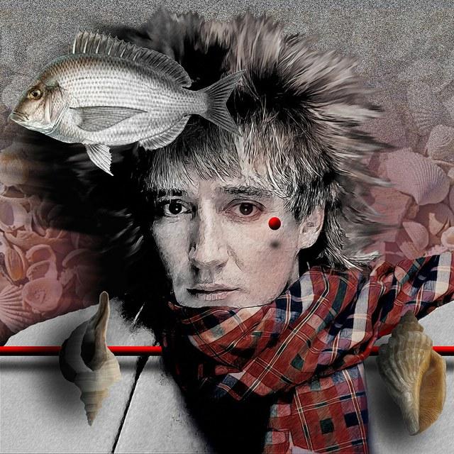 Rod Stewart - slika Zorana Mujbegovica