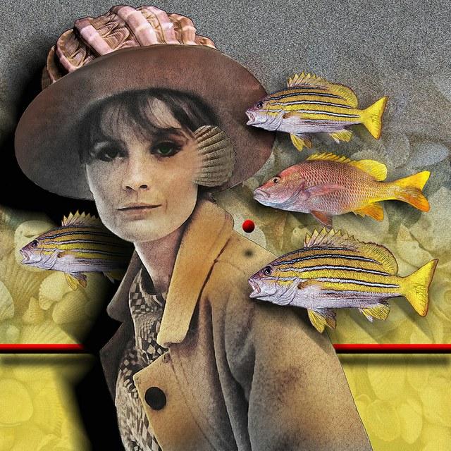 Sandie Shaw - slika Zorana Mujbegovica