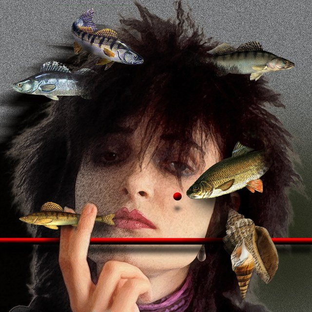 Susan Janet Ballion aka Siouxsie Sioux - slika Zorana Mujbegovica